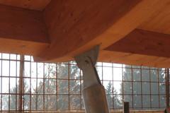 E 39 possibile sostenere una tettoia con travi in legno for Costo delle travi a vista