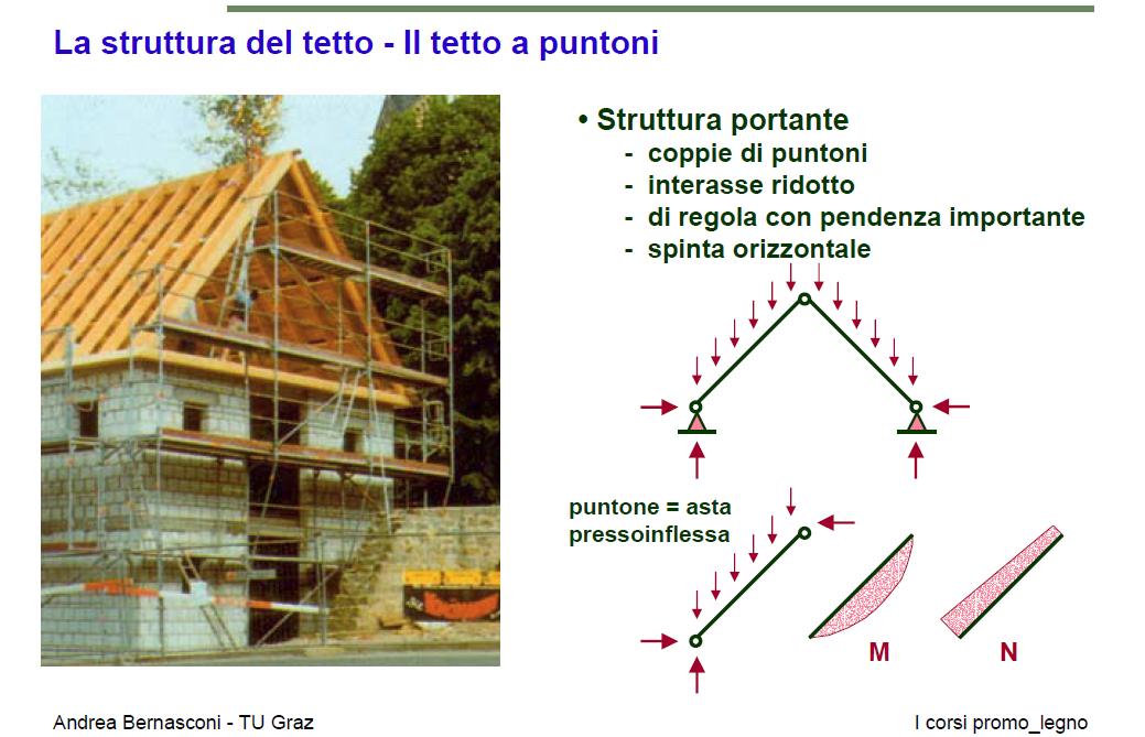 La prof di anatomiacomplete italian movie f70 - 2 3